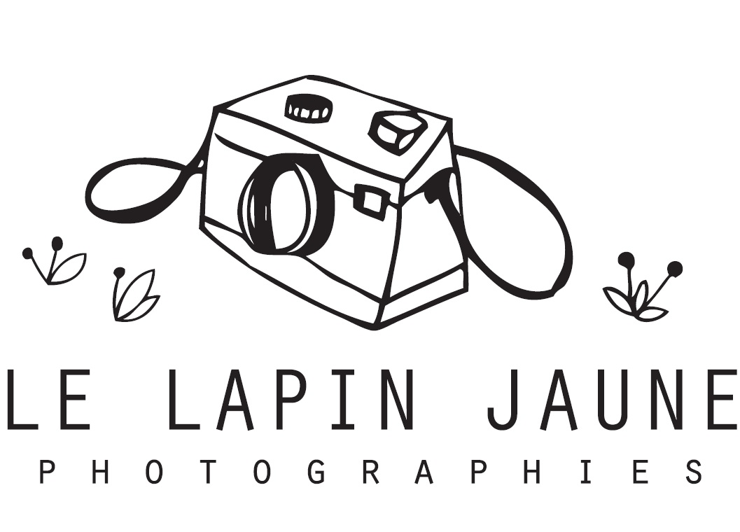 Le Lapin Jaune Photographies